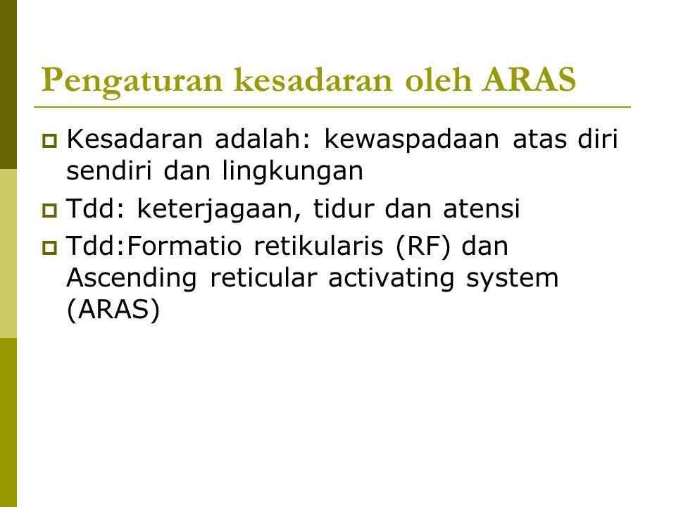 Pengaturan kesadaran oleh ARAS