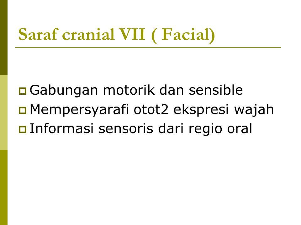 Saraf cranial VII ( Facial)