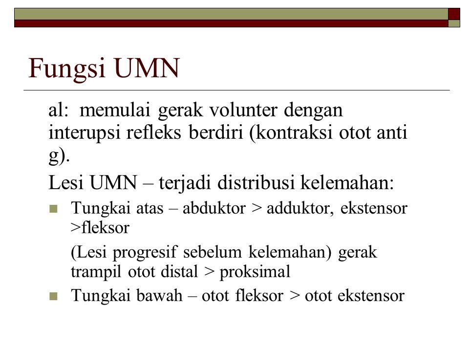 Fungsi UMN al: memulai gerak volunter dengan interupsi refleks berdiri (kontraksi otot anti g). Lesi UMN – terjadi distribusi kelemahan: