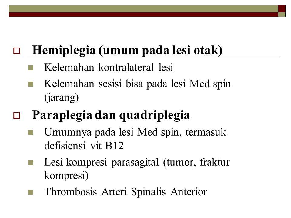 Hemiplegia (umum pada lesi otak)