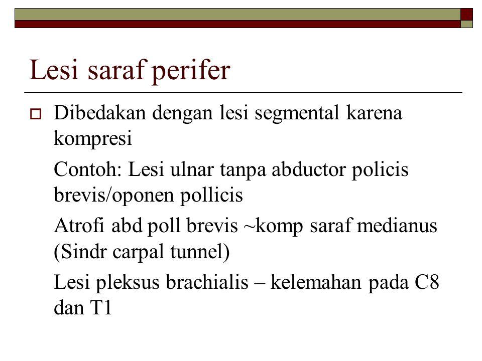 Lesi saraf perifer Dibedakan dengan lesi segmental karena kompresi