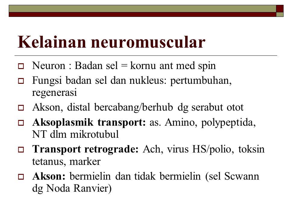 Kelainan neuromuscular