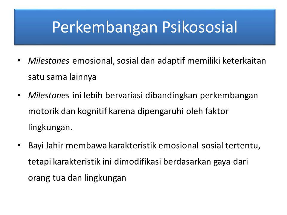 Perkembangan Psikososial