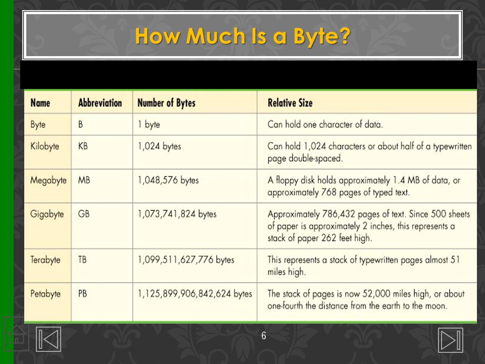 How Much Is a Byte