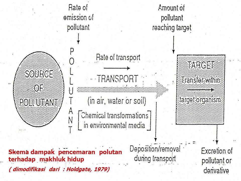 Skema dampak pencemaran polutan terhadap makhluk hidup