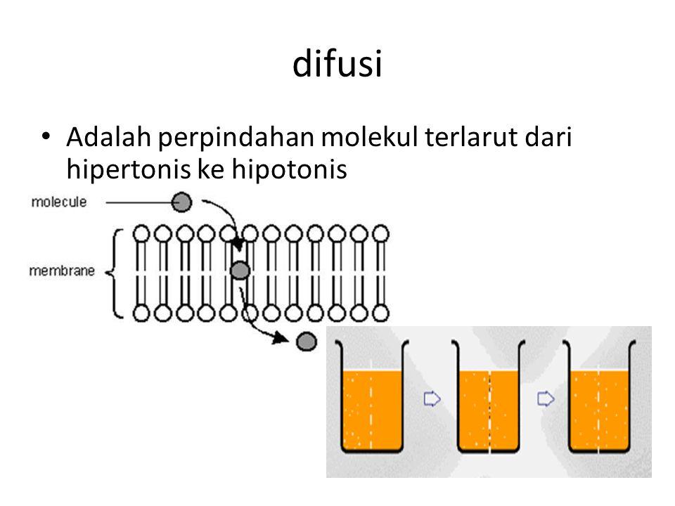 difusi Adalah perpindahan molekul terlarut dari hipertonis ke hipotonis