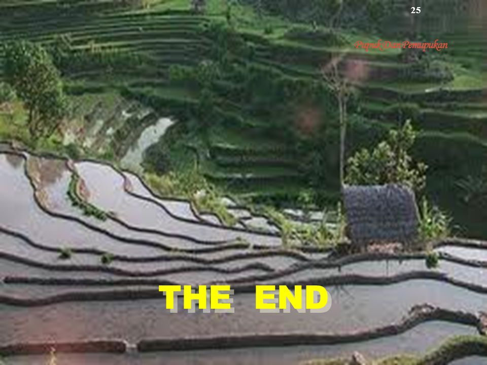 Pupuk Dan Pemupukan THE END