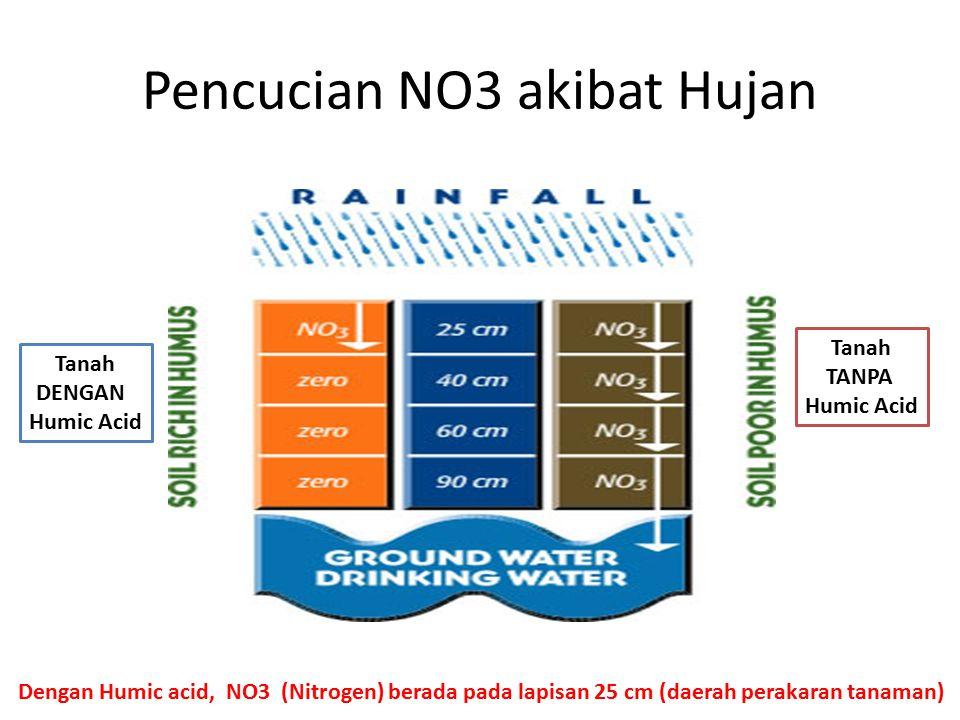 Pencucian NO3 akibat Hujan