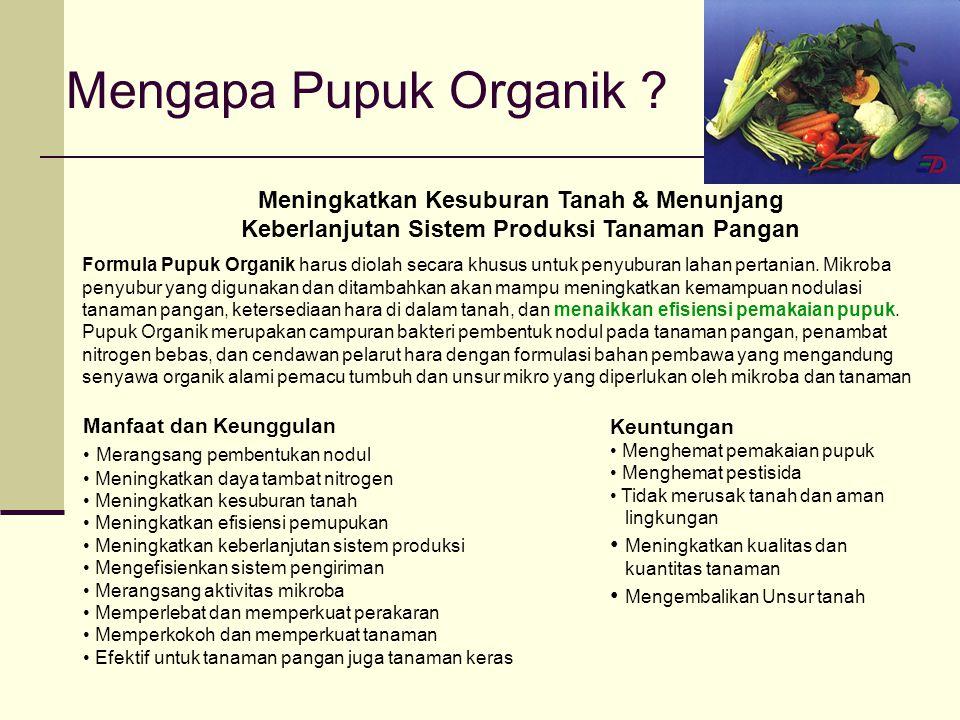 Mengapa Pupuk Organik Meningkatkan Kesuburan Tanah & Menunjang Keberlanjutan Sistem Produksi Tanaman Pangan.