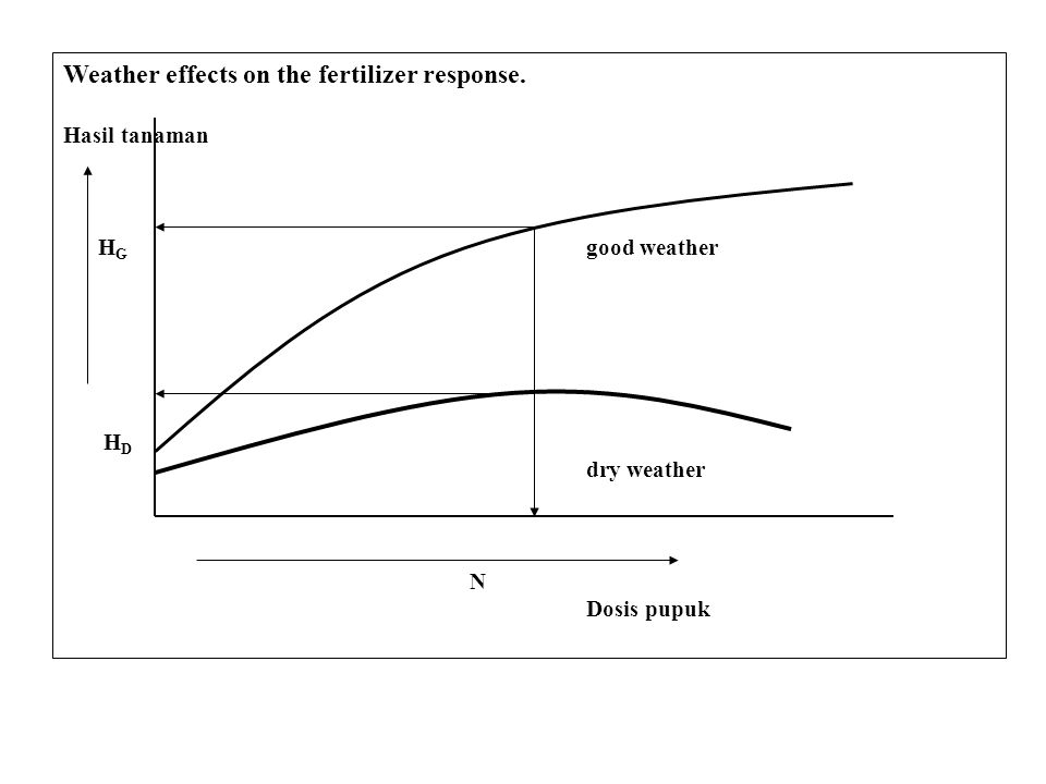 Weather effects on the fertilizer response.