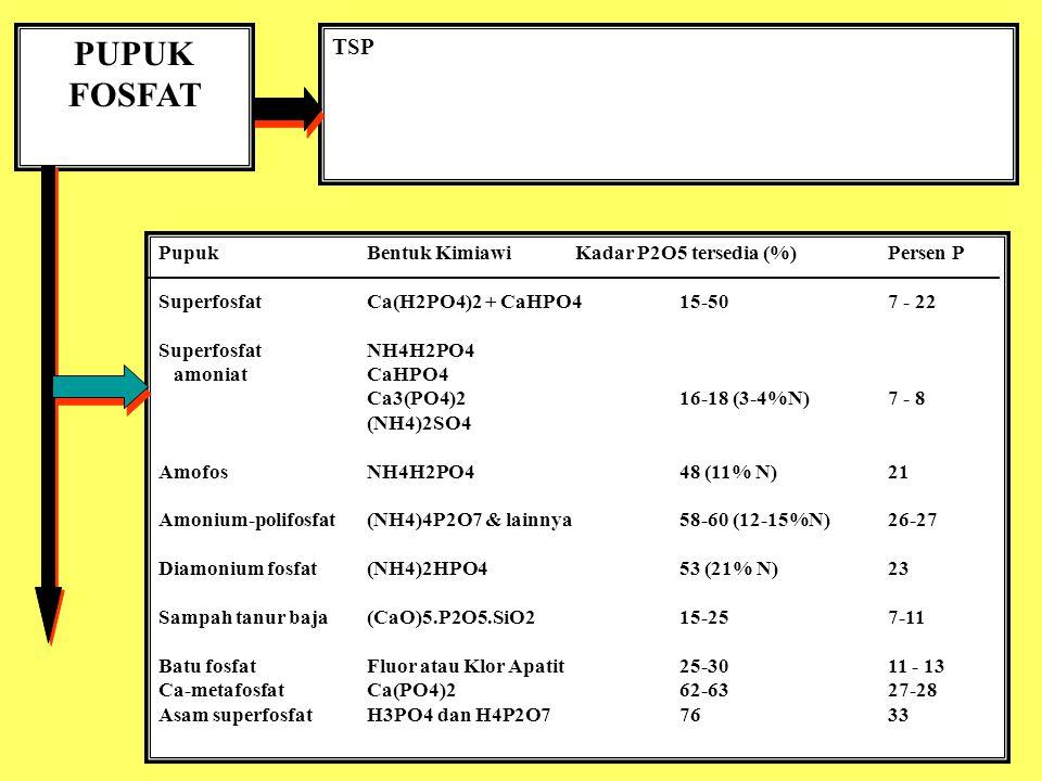 PUPUK FOSFAT TSP Pupuk Bentuk Kimiawi Kadar P2O5 tersedia (%) Persen P