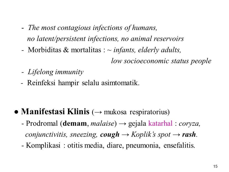● Manifestasi Klinis (→ mukosa respiratorius)
