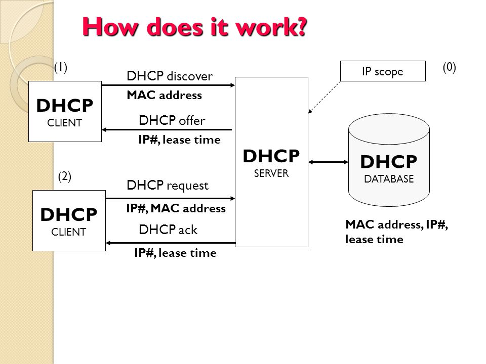 How does it work DHCP DHCP DHCP DHCP DHCP discover DHCP offer