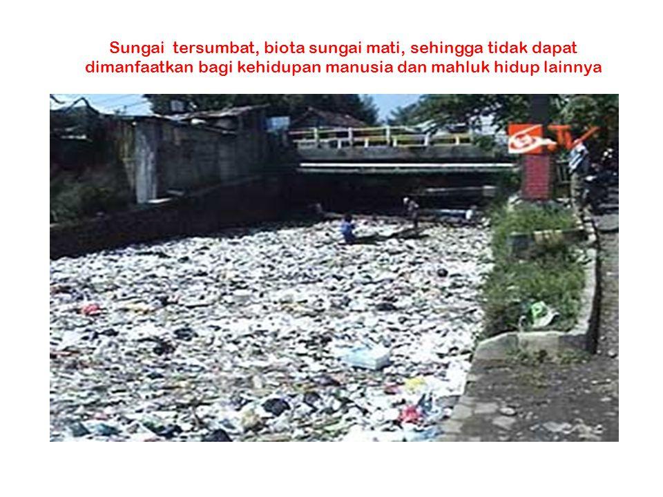 Sungai tersumbat, biota sungai mati, sehingga tidak dapat dimanfaatkan bagi kehidupan manusia dan mahluk hidup lainnya