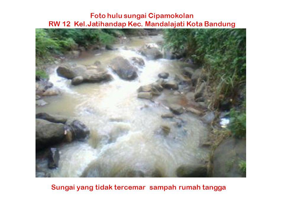 Foto hulu sungai Cipamokolan