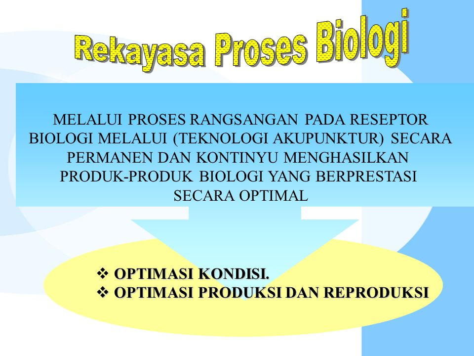 Rekayasa Proses Biologi