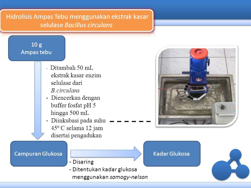 Hidrolisis Ampas Tebu menggunakan ekstrak kasar selulase Bacillus circulans