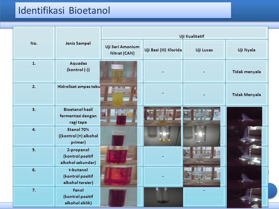Identifikasi Bioetanol