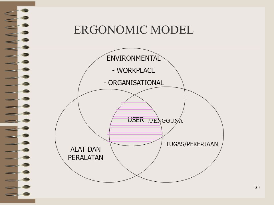 ERGONOMIC MODEL ENVIRONMENTAL WORKPLACE ORGANISATIONAL USER