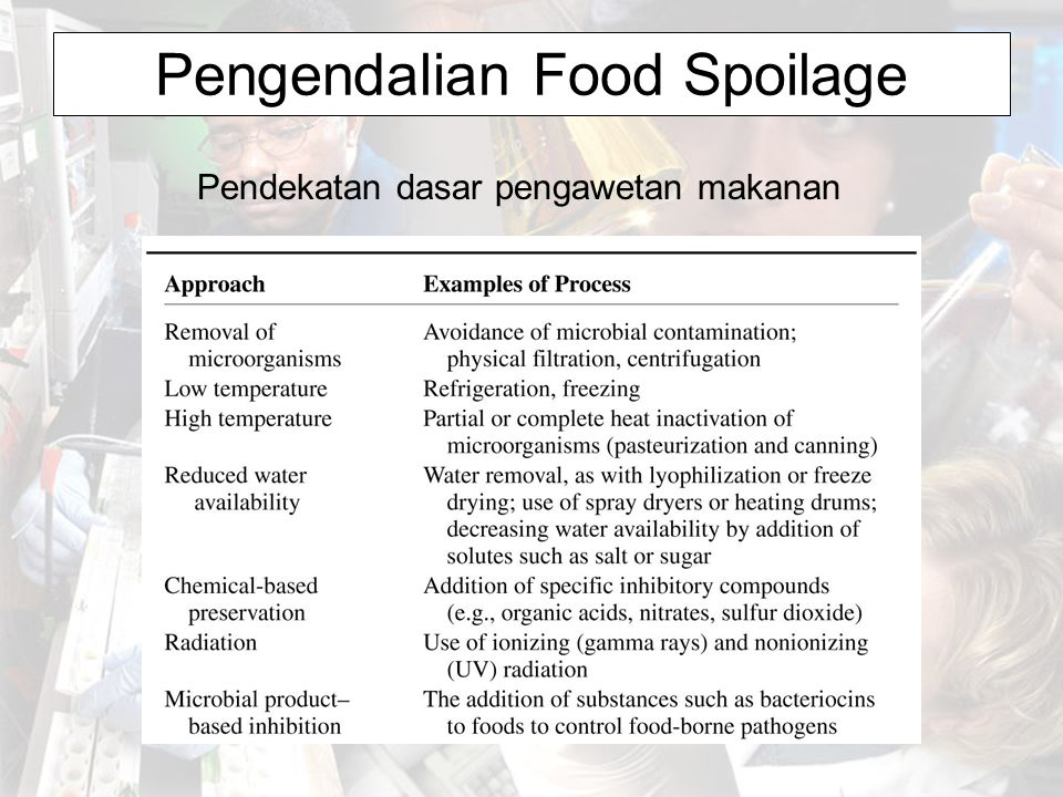 Pengendalian Food Spoilage