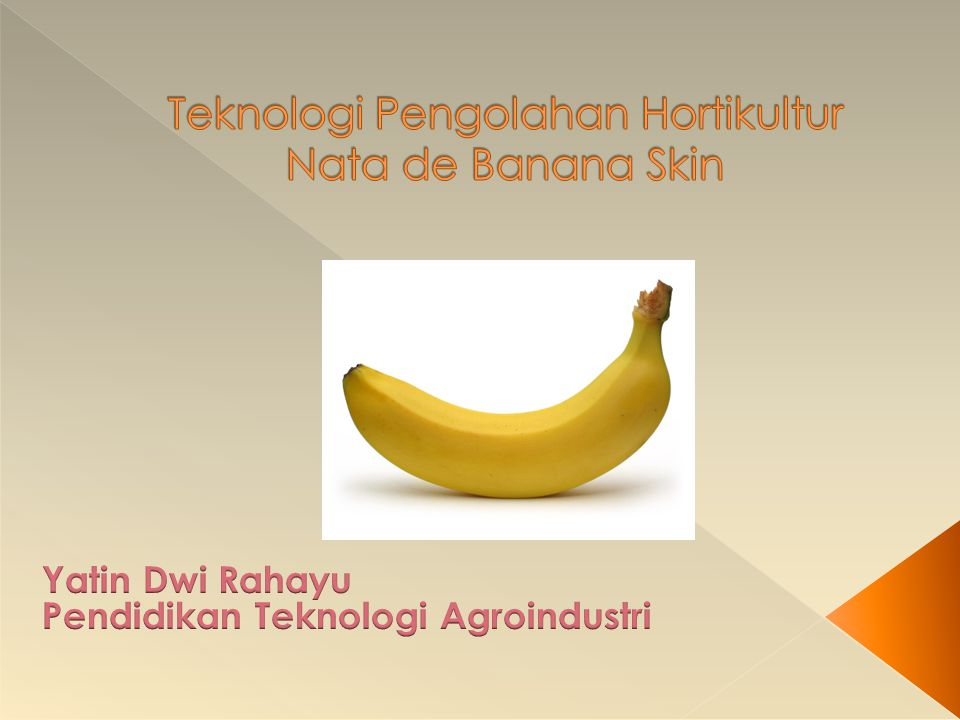 Teknologi Pengolahan Hortikultur Nata de Banana Skin
