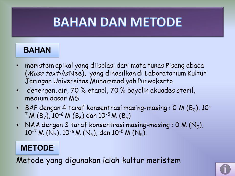 BAHAN DAN METODE BAHAN Metode yang digunakan ialah kultur meristem