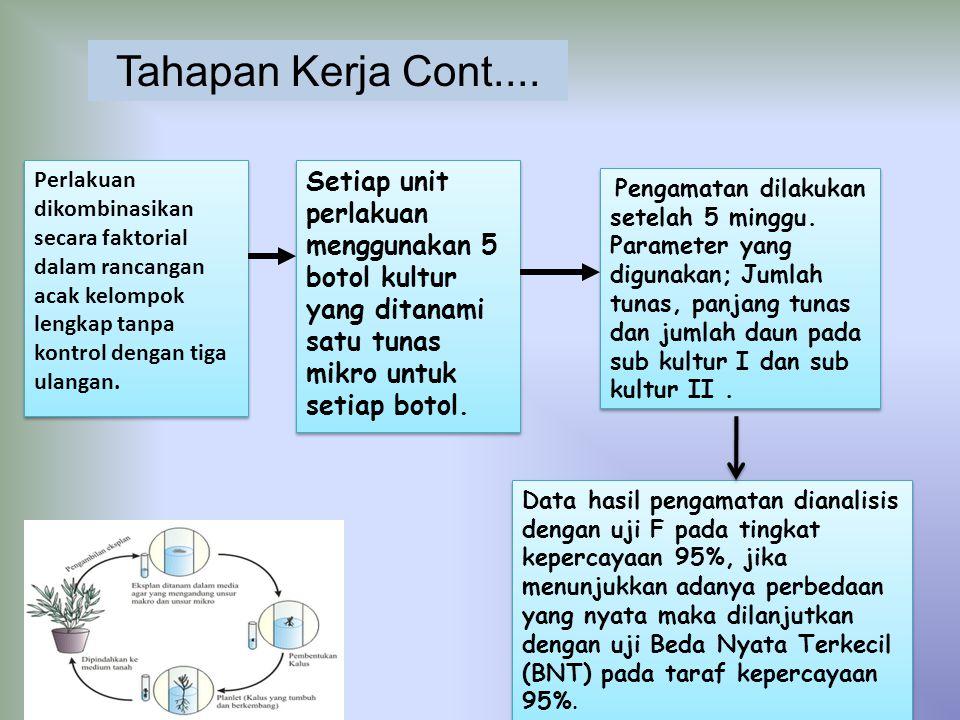 Tahapan Kerja Cont.... Perlakuan dikombinasikan secara faktorial dalam rancangan acak kelompok lengkap tanpa kontrol dengan tiga ulangan.