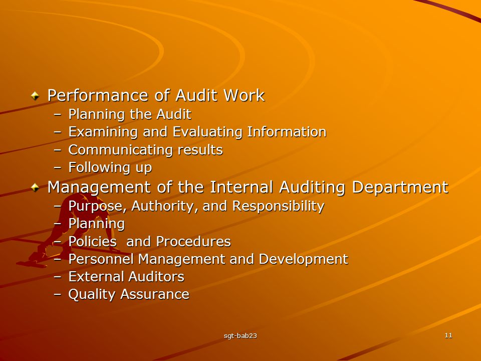 Performance of Audit Work