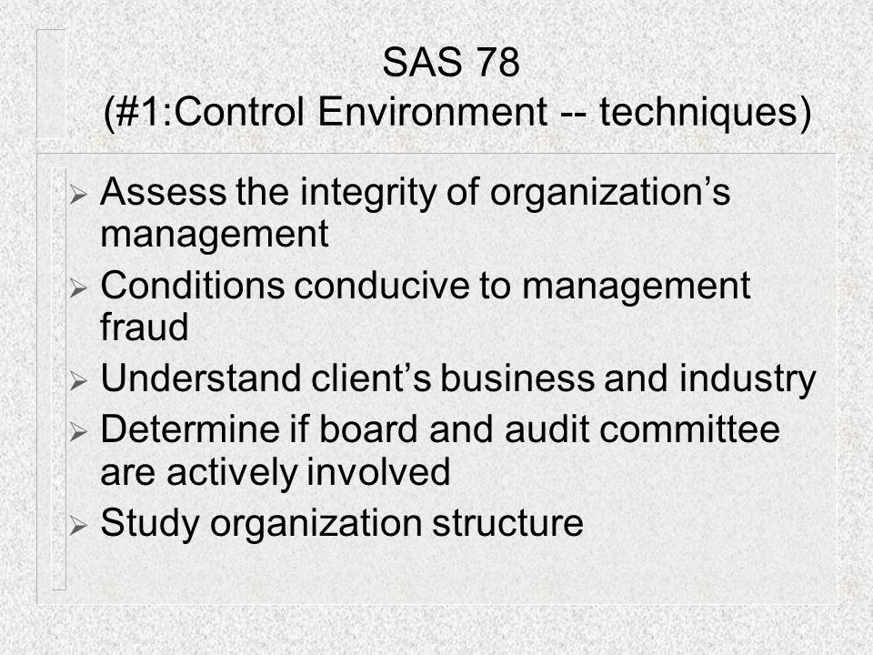 SAS 78 (#1:Control Environment -- techniques)