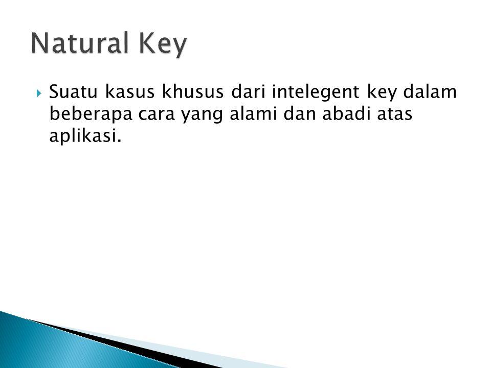 Natural Key Suatu kasus khusus dari intelegent key dalam beberapa cara yang alami dan abadi atas aplikasi.
