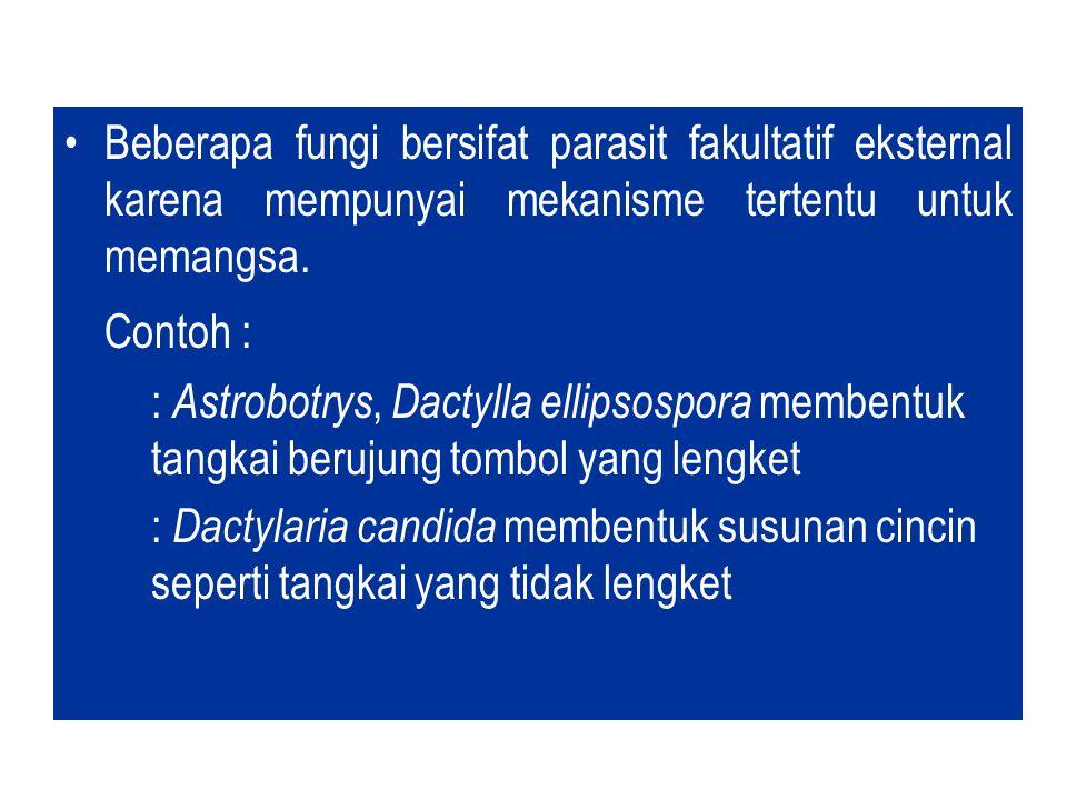 Menurut Garcia et al., (1988) Pengendalian hayati harus memenuhi dua syarat utama : Keterpautan kepadatan (density dependence)
