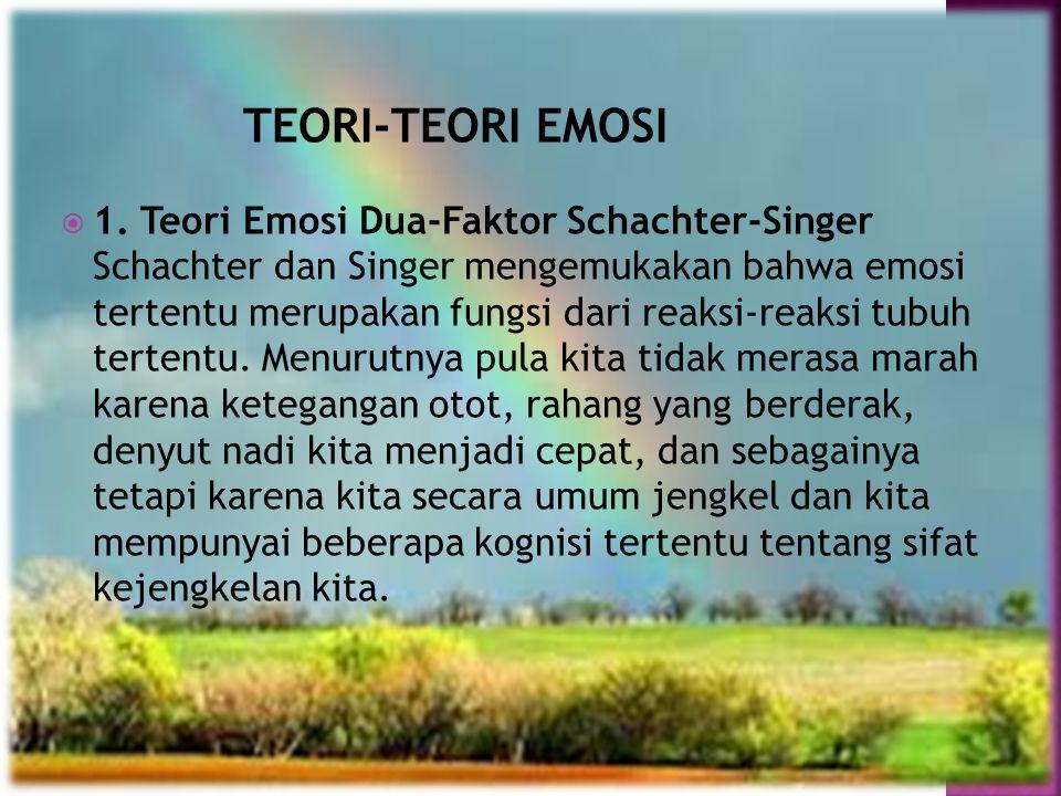TEORI-TEORI EMOSI