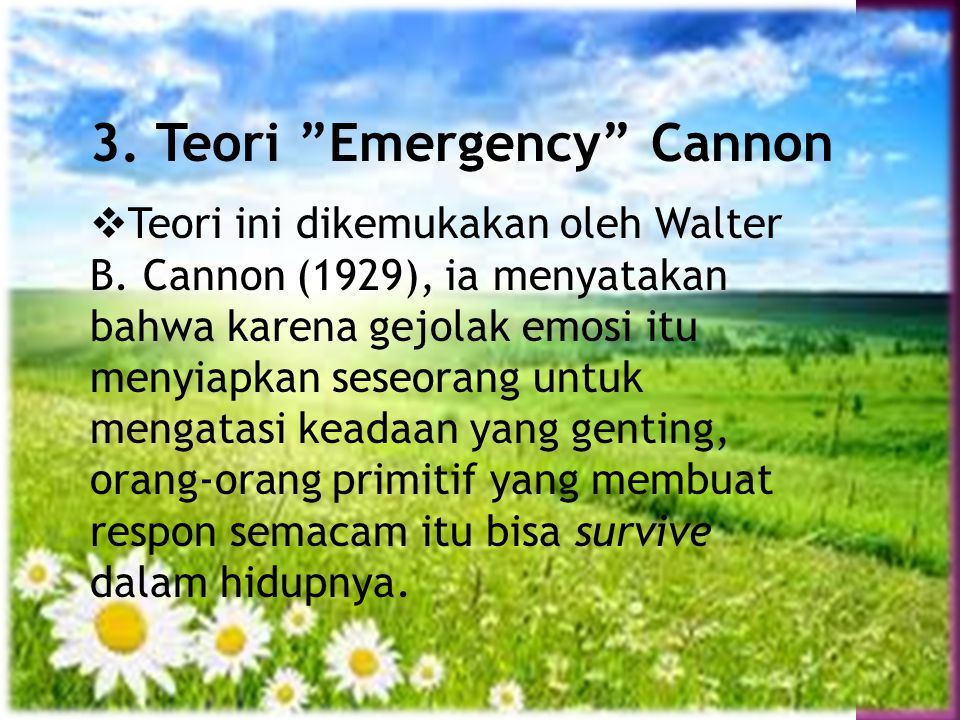 3. Teori Emergency Cannon