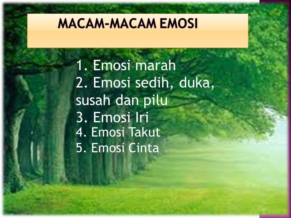 2. Emosi sedih, duka, susah dan pilu 3. Emosi Iri