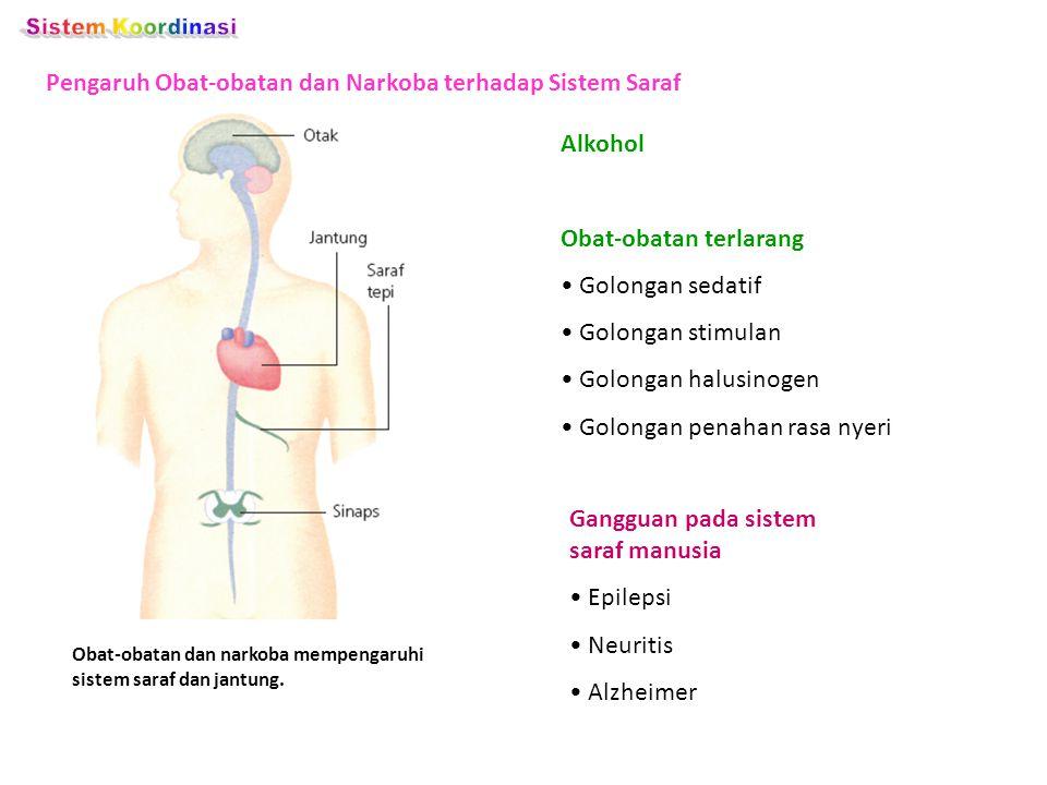 Sistem Koordinasi Pengaruh Obat-obatan dan Narkoba terhadap Sistem Saraf. Alkohol. Obat-obatan terlarang.