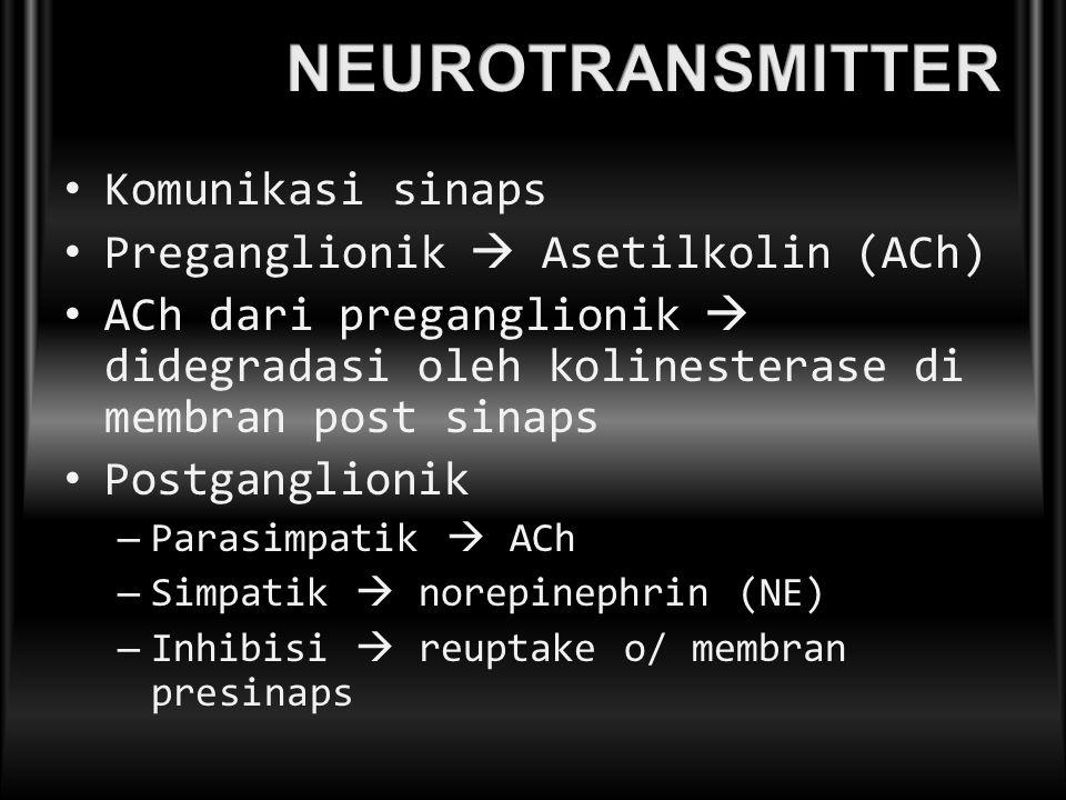 NEUROTRANSMITTER Komunikasi sinaps Preganglionik  Asetilkolin (ACh)