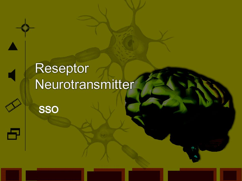 Reseptor Neurotransmitter