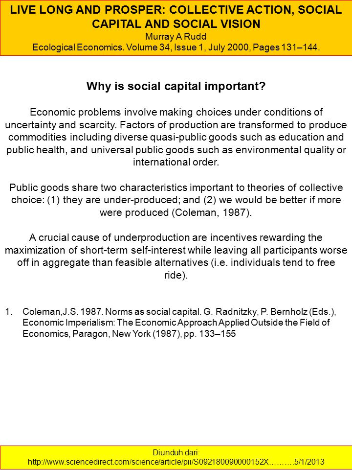 Why is social capital important