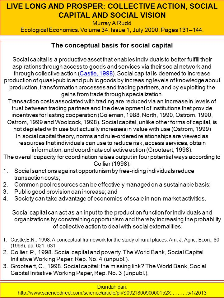 The conceptual basis for social capital