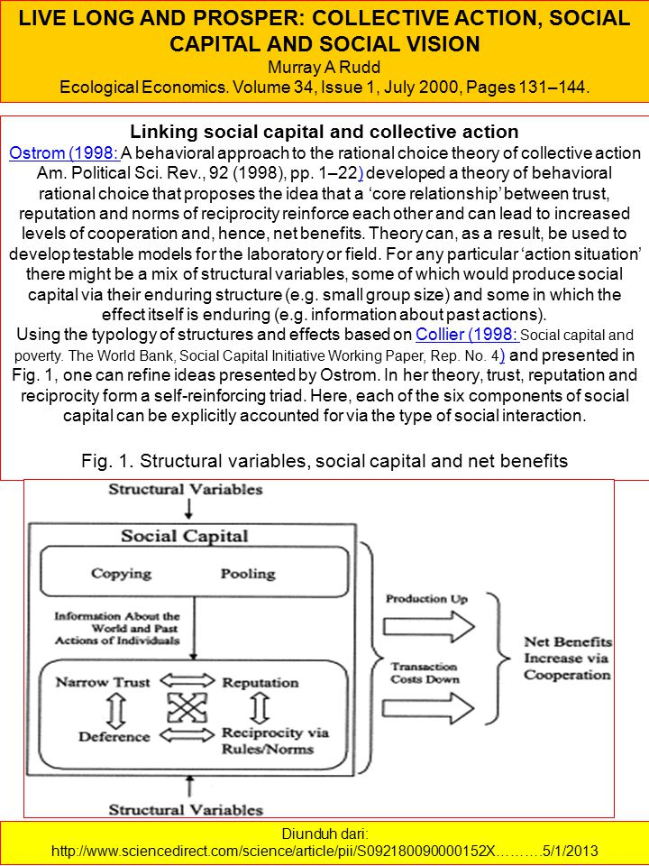 Linking social capital and collective action