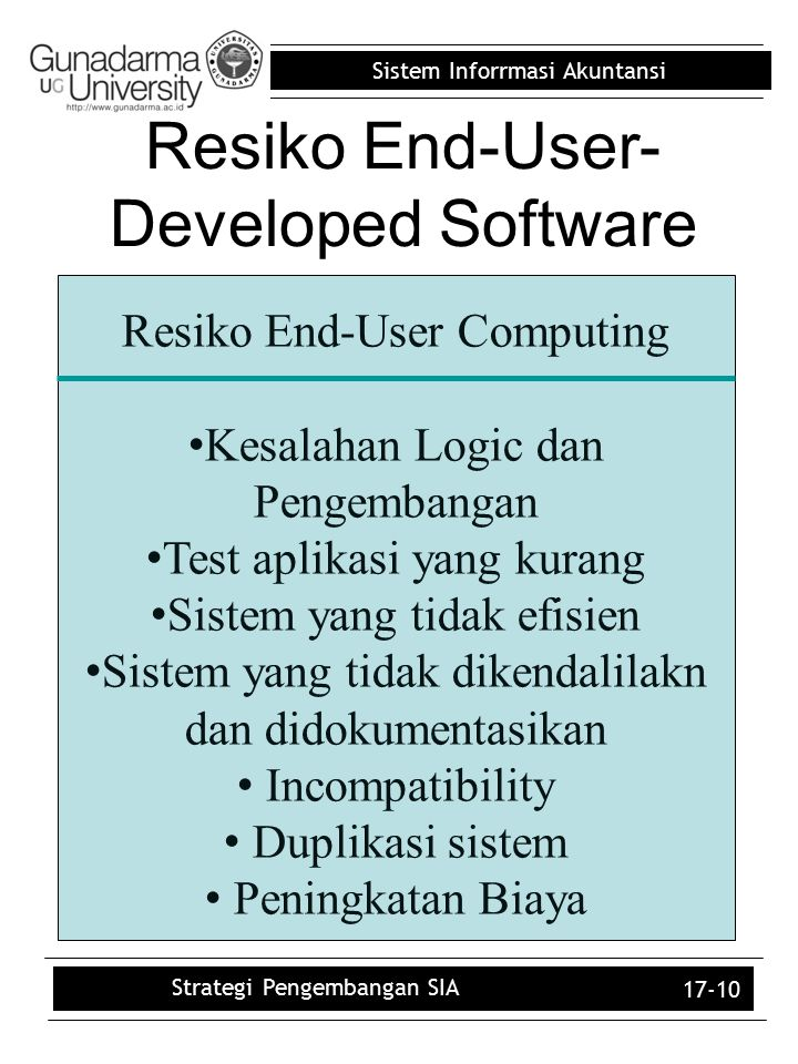 Resiko End-User-Developed Software