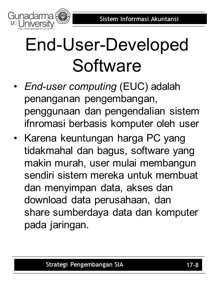 End-User-Developed Software