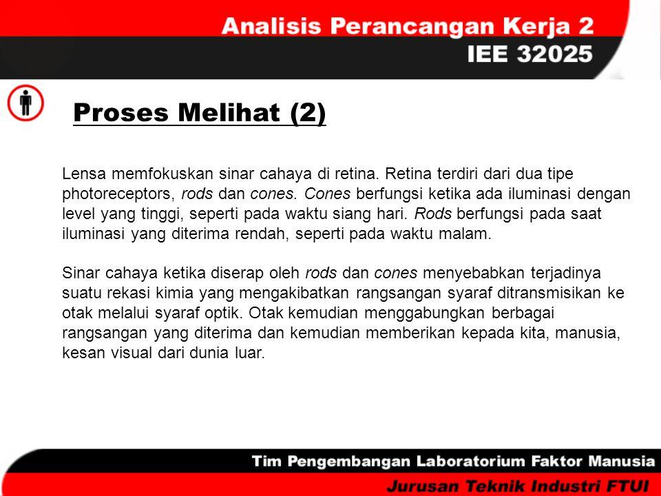Proses Melihat (2)