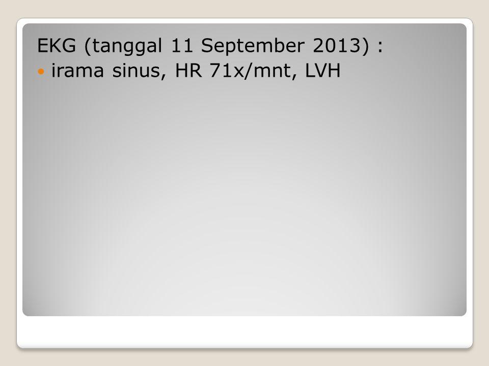 EKG (tanggal 11 September 2013) :