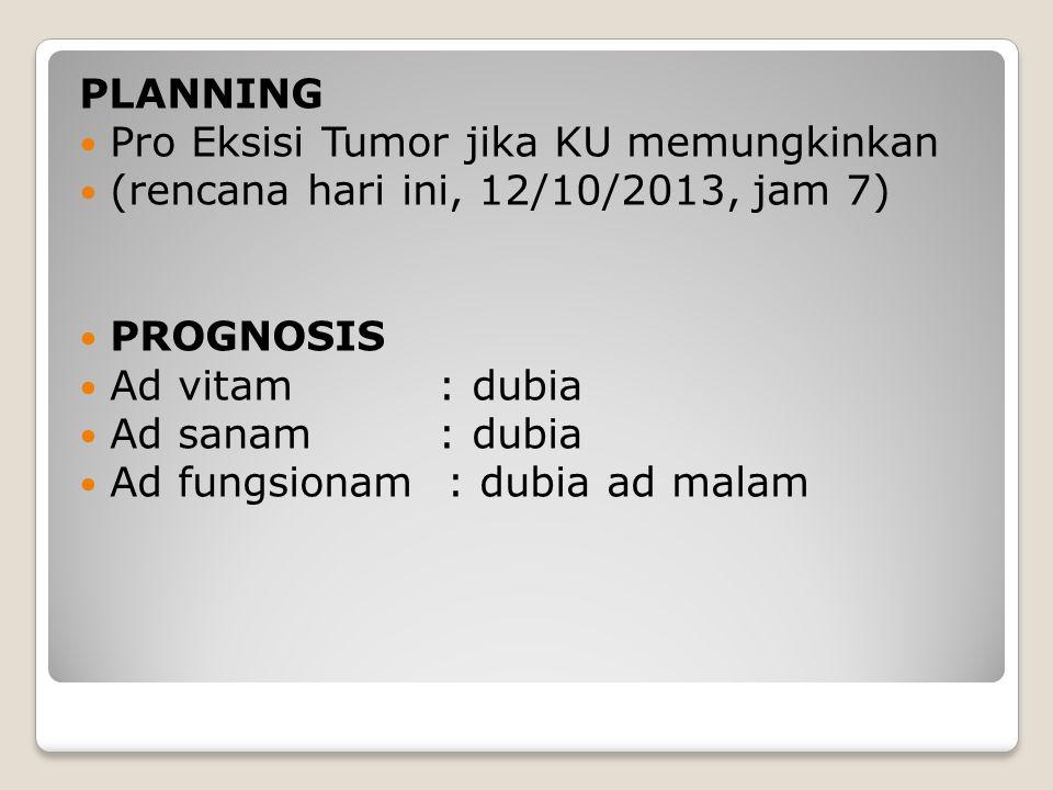 PLANNING Pro Eksisi Tumor jika KU memungkinkan. (rencana hari ini, 12/10/2013, jam 7) PROGNOSIS. Ad vitam : dubia.