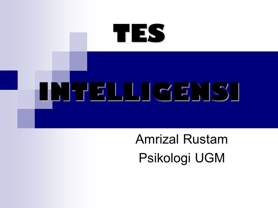 Amrizal Rustam Psikologi UGM