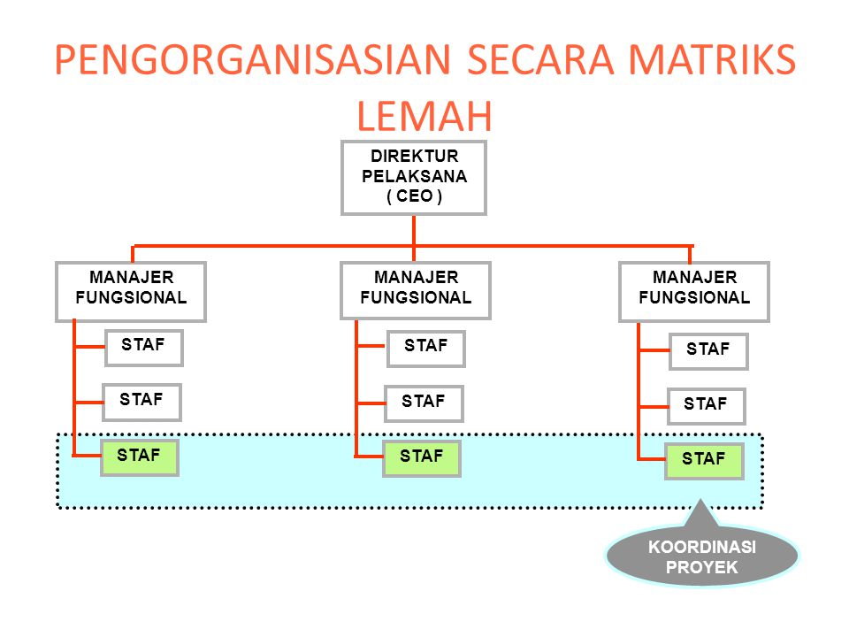 PENGORGANISASIAN SECARA MATRIKS LEMAH