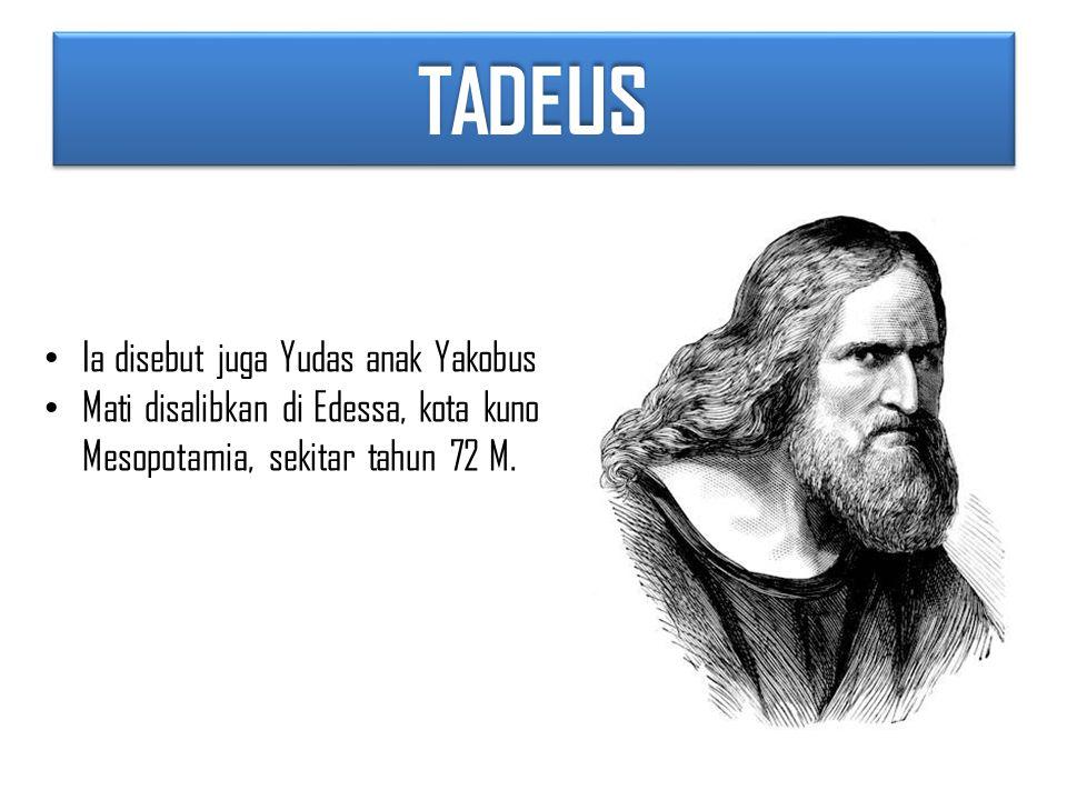 TADEUS Ia disebut juga Yudas anak Yakobus