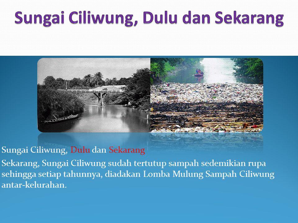 Sungai Ciliwung, Dulu dan Sekarang
