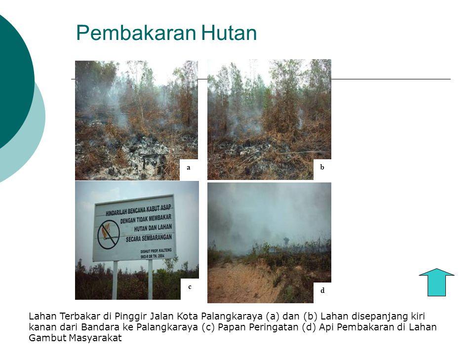 Pembakaran Hutan a. b. d. c.